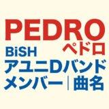 PEDROのロゴ画像