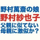 野村紗也子のロゴ画像