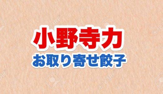 小野寺力社長の経歴|会社の名前や場所と肩書餃子ジョッキーの意味|お取り寄せ餃子トップ5
