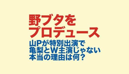 野ブタをプロデュースで山下智久が特別出演で亀梨和也とのダブル主演ではなかった本当の理由