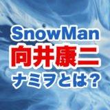 向井康二とナミヲのロゴ画像
