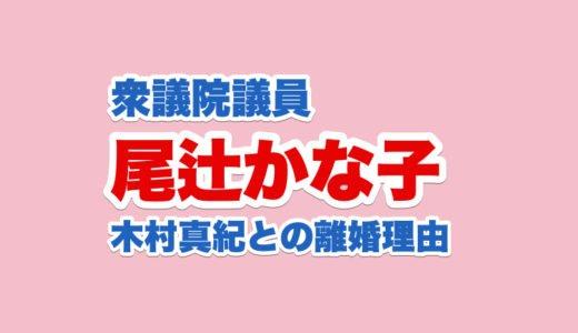 尾辻かな子の議員経歴と年収|結婚相手の木村真紀との離婚理由|橋下徹批判ツイートとは